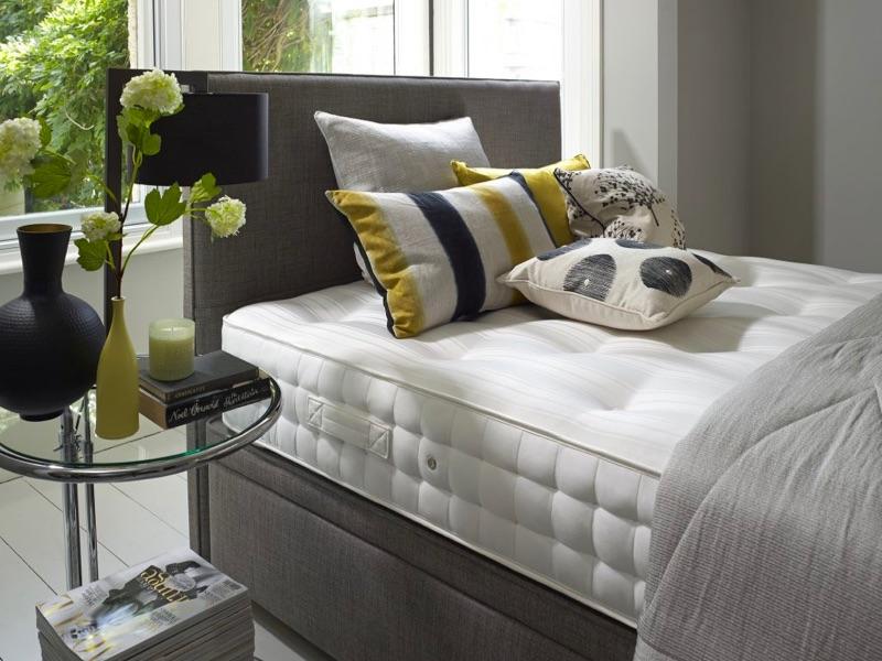 Vienna Ortho - Beds - Floorstore Wakefield