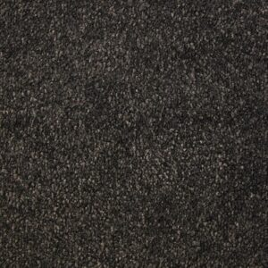 Nightingale | Cormar Apollo Comfort | Soft Deep Pile | Floorstore
